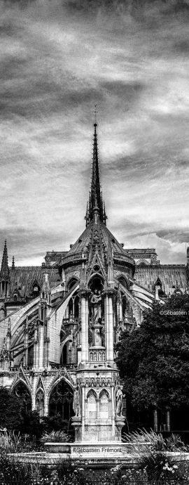 French Photographer Art Photography Paris / Notre-Dame de Paris