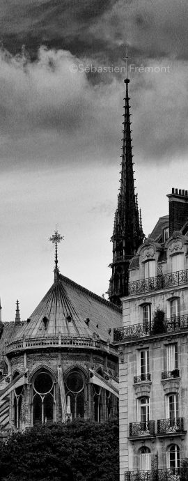 French Photographer Art Photography Architecture / The spire of Notre-Dame de Paris