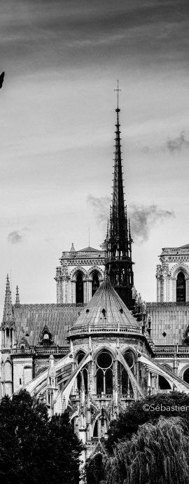 French Photographer Art Photography Architecture / Notre-Dame de Paris