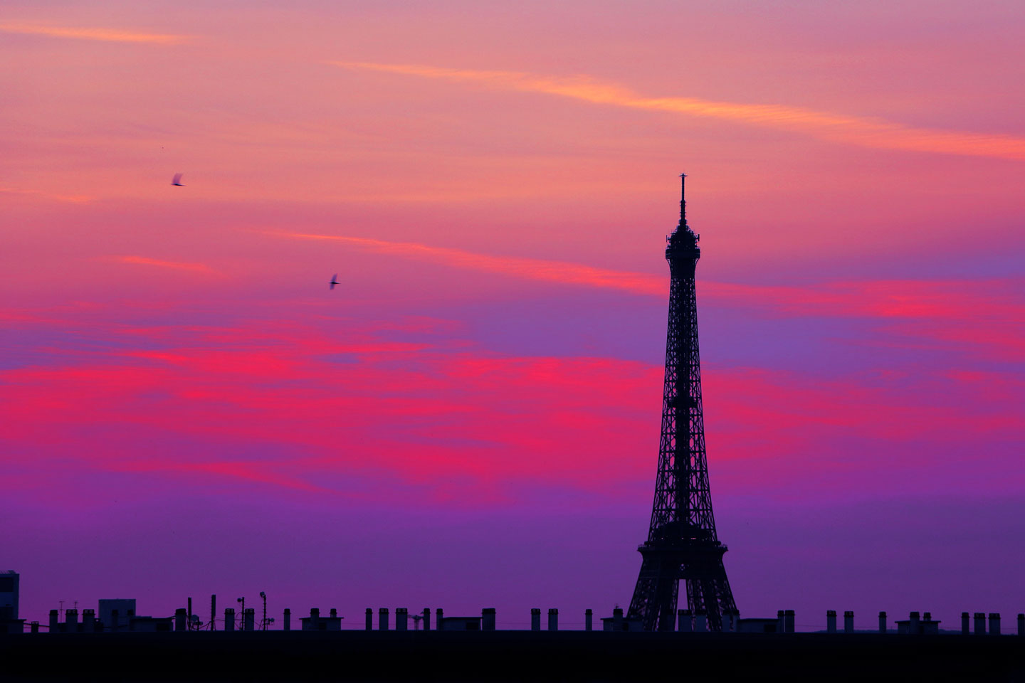French Photographer Paris France Landscape Photography Sunset at Eiffel Tower with Flight of birds