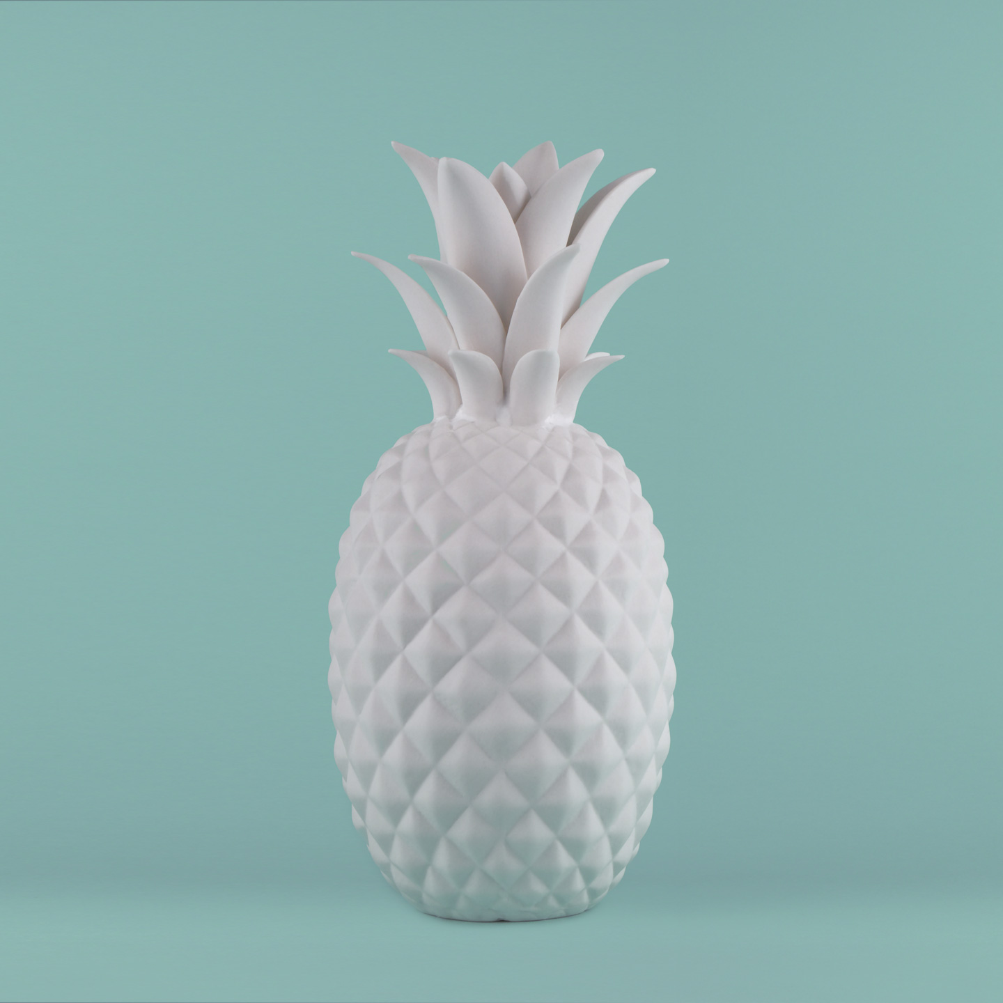 French Photographer Paris Studio Packshot Photography Maison du Monde Porcelain Pineapple