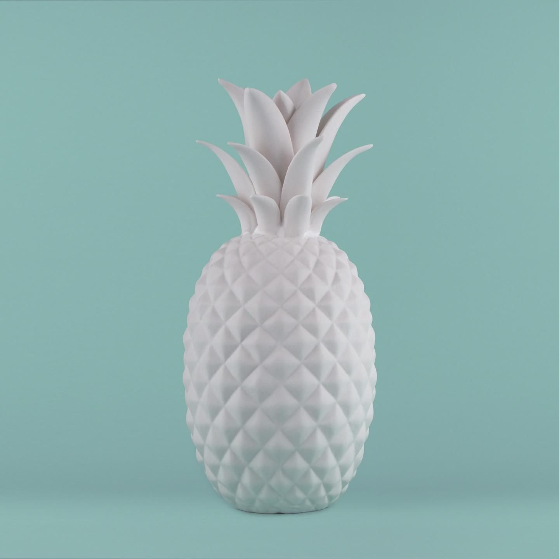 French Photographer Paris Studio Packshot Photography Maison du Monde Porcelain Pineapple